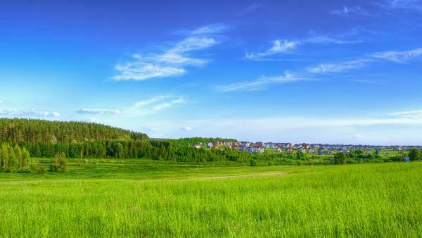 Как оформить земельный участок в собственность?